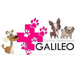 Centro Veterinario Galileo