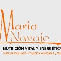 Mario Navajo