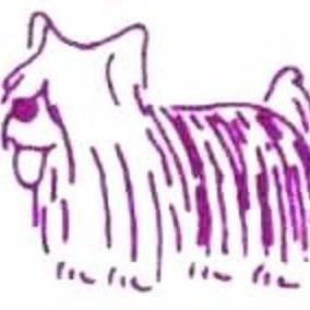 Peluquería  Canina Kennel