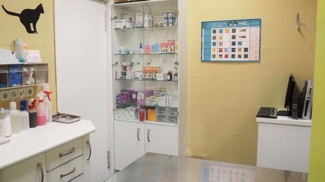 Centro Veterinario Kennel