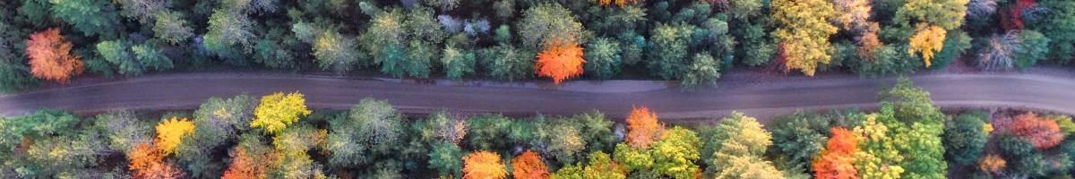 Escapadas de otoño